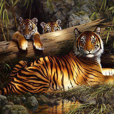 Семья тигров, оригинал