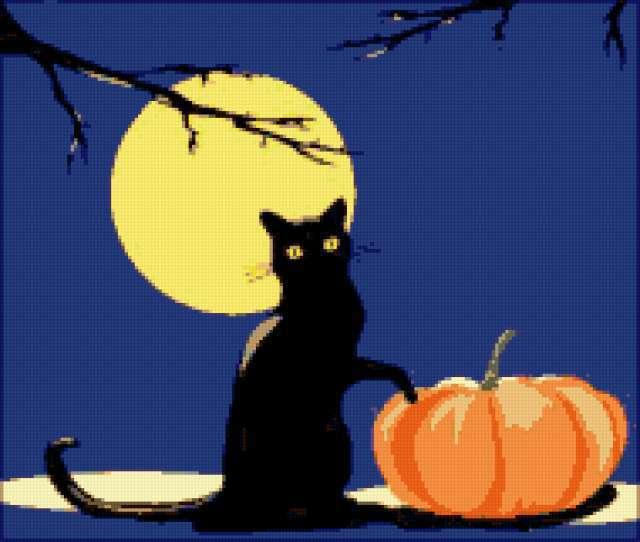 Чёрный кот и полная луна,