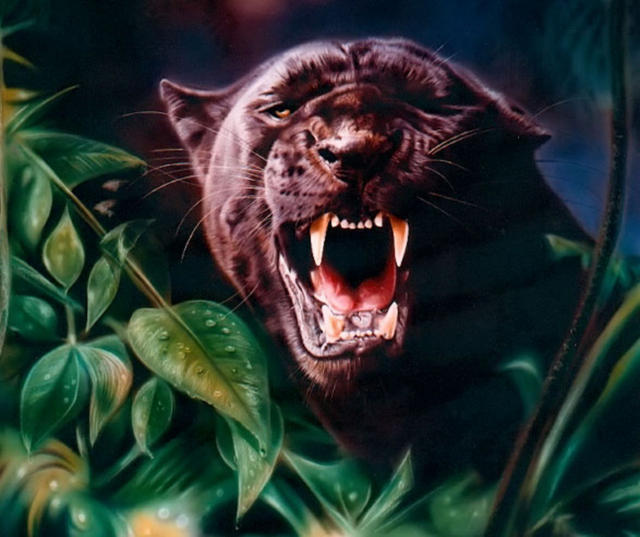 Пантера , оскал, оригинал