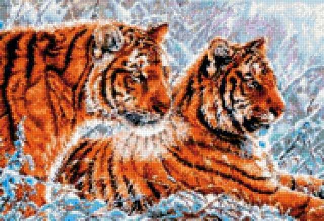 Два тигра, парочка