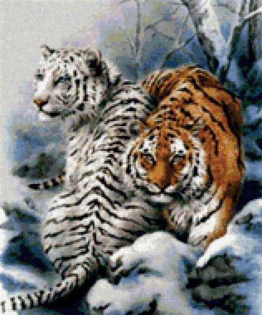 К схеме вышивки «Пара тигров»