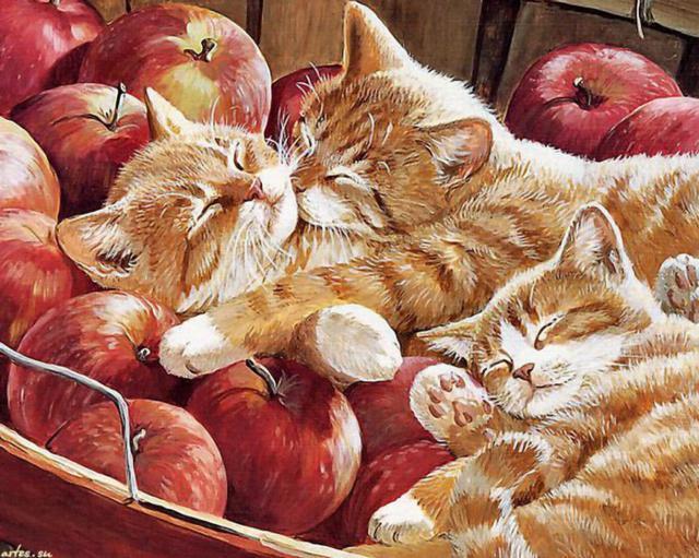 Рыжие котята в яблоках,
