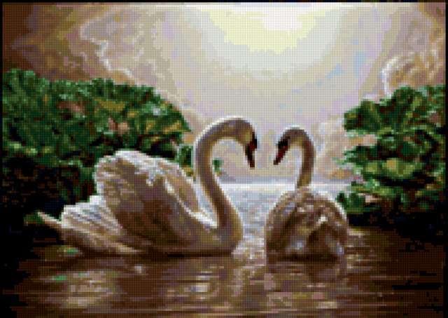 Пара лебедей, картина