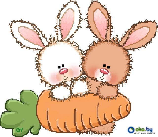 новый, кролик, морковь