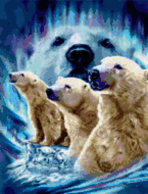 Белые медведи, белые медведи,