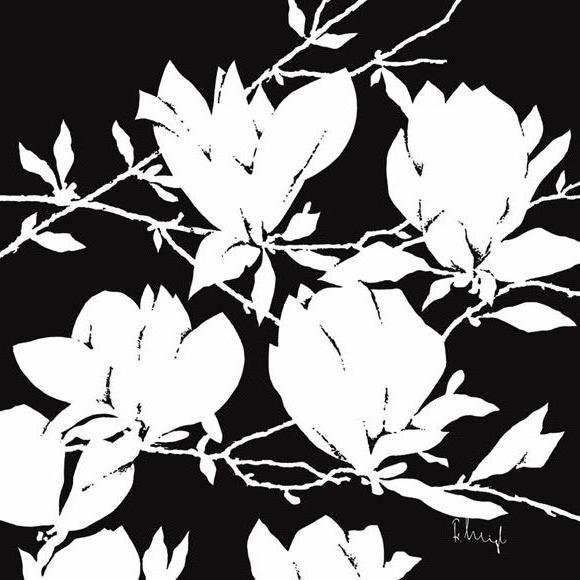 Магнолии, черно-белый, цветы,