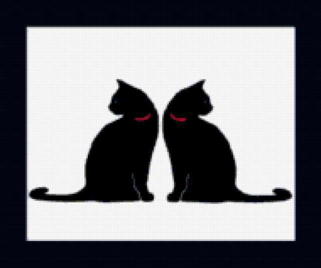 Чёрно-белые коты, предпросмотр