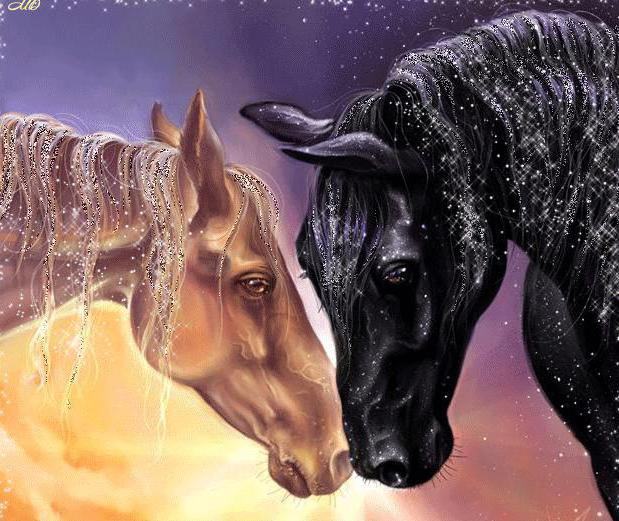 Конный мир, животные, домашние
