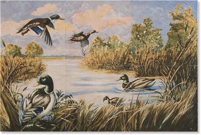 Дикие утки, озеро. птицы.