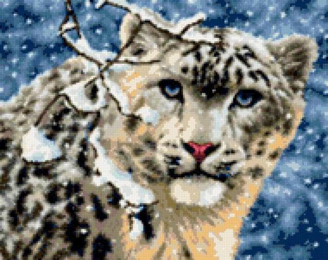 Леопард, предпросмотр