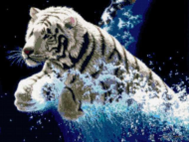 Прыжок тигра, предпросмотр