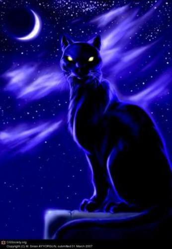 Черная пантера,