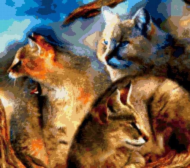 Дикие кошки, предпросмотр