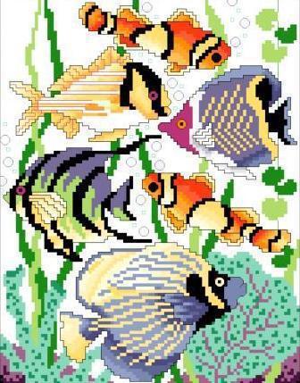 Аквариумные рыбки, рыбы, рыбка