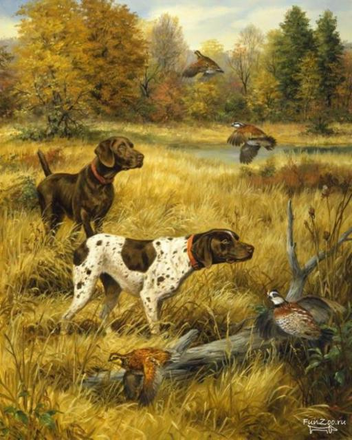 Собаки схема вышивки