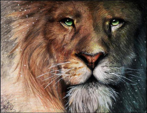 Лев Аслан, животные, картина