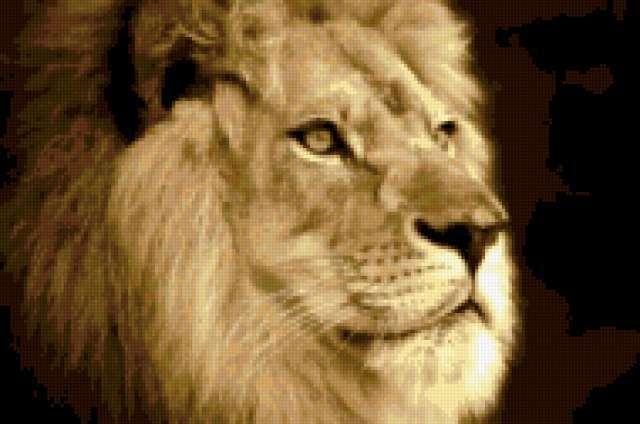 К схеме вышивки «Лев (четкая