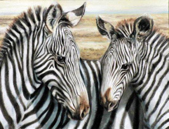 Зебры (четкая схема), оригинал
