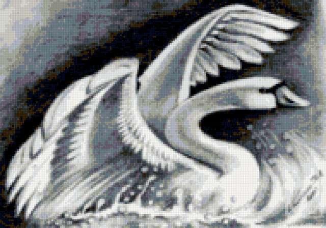 Лебедь, предпросмотр
