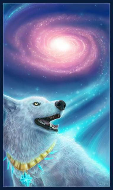 Северное сияние, волки