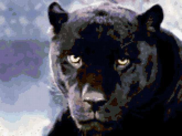 Схемы вышивки пантера - схемы