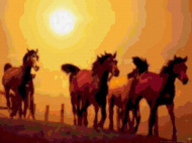 Табун лошадей, животные