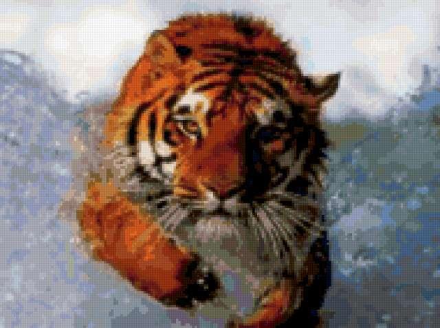 Тигр, бегущий по снегу,