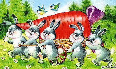 Заяц тушеный в сметане рецепт 63