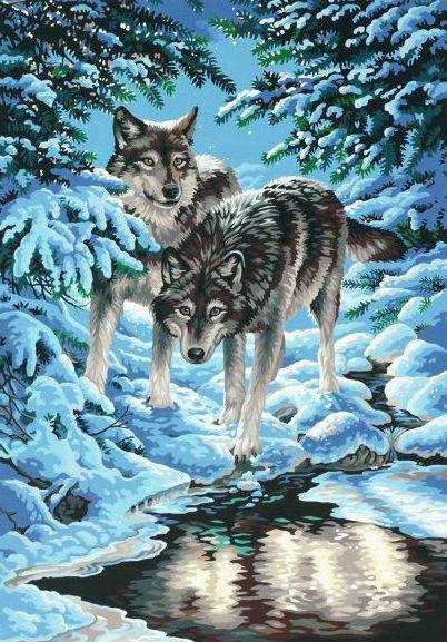 Волки, волки, волк, зима, снег
