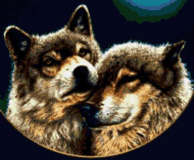 Нежность волков, животные