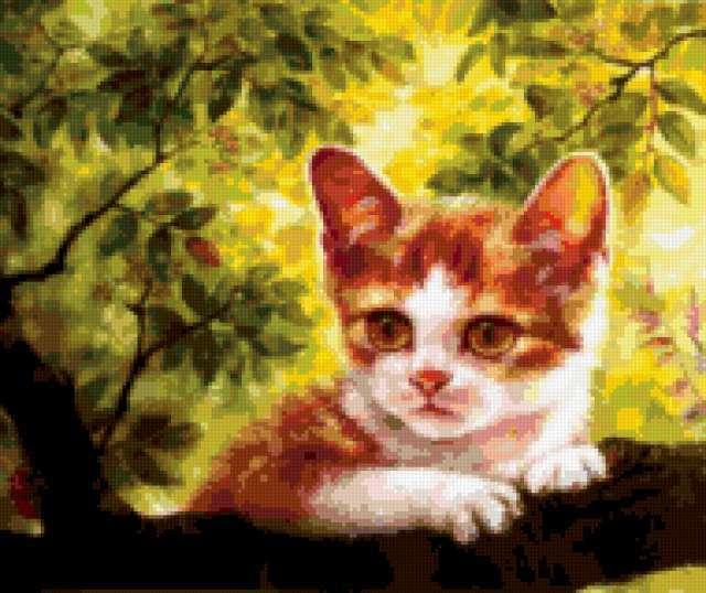 Рыжий котёнок на дереве,