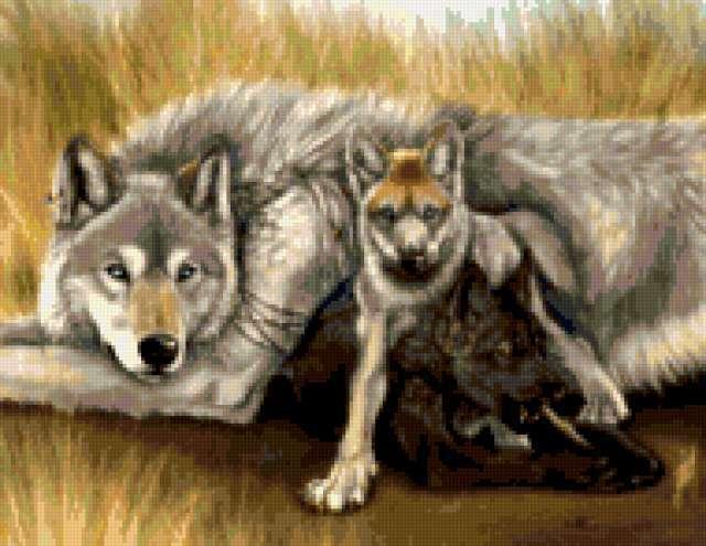 Рядом с мамочкой, волк, волки,
