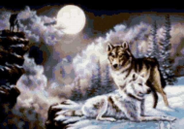 Полнолуние и волки