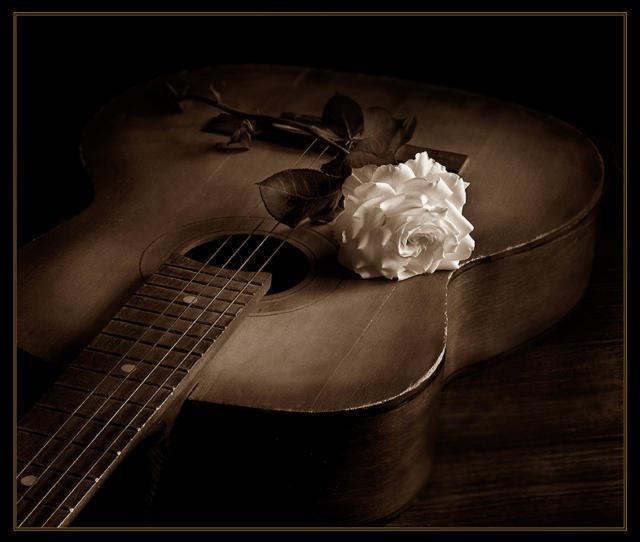 Гитара и белая роза, оригинал