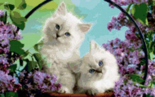 Котята в корзинке с цветами,