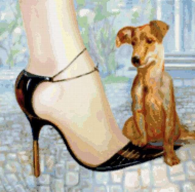 Собака у женских ног,