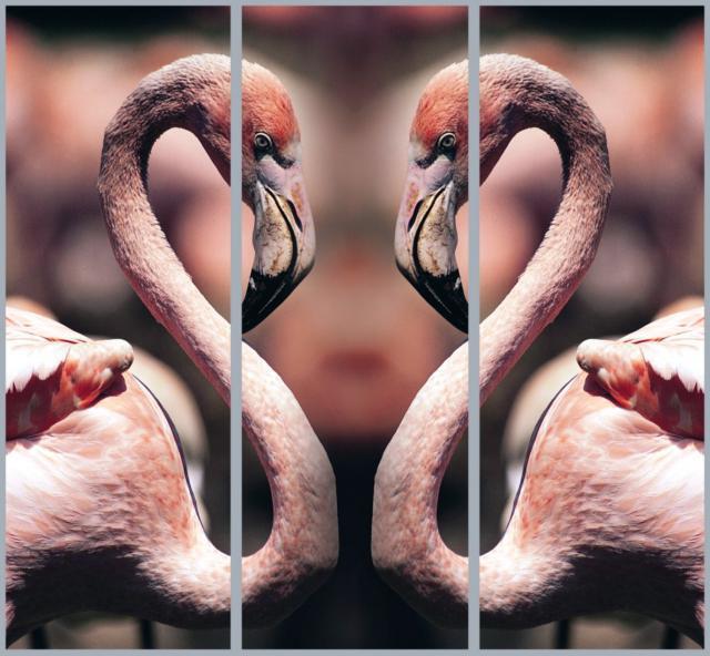Розовый фламинго - триптих