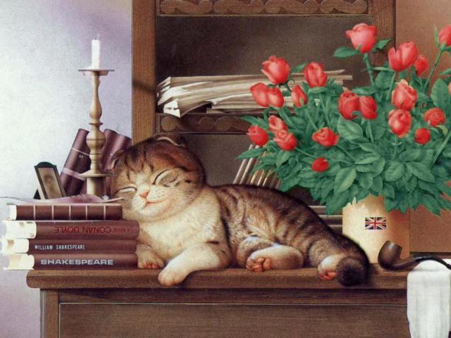 Сон, кот. книги. букет. стол.
