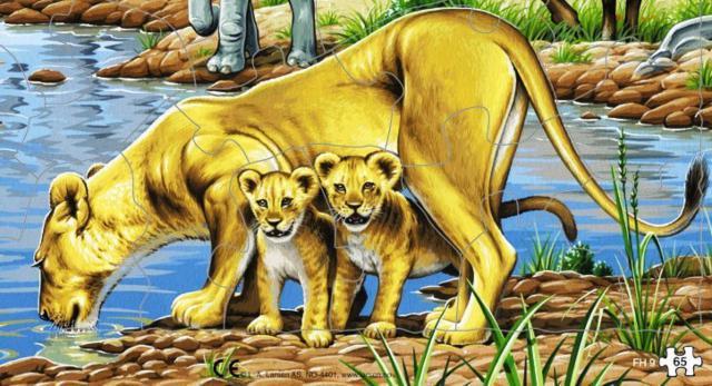 Львица и львята на водопое,