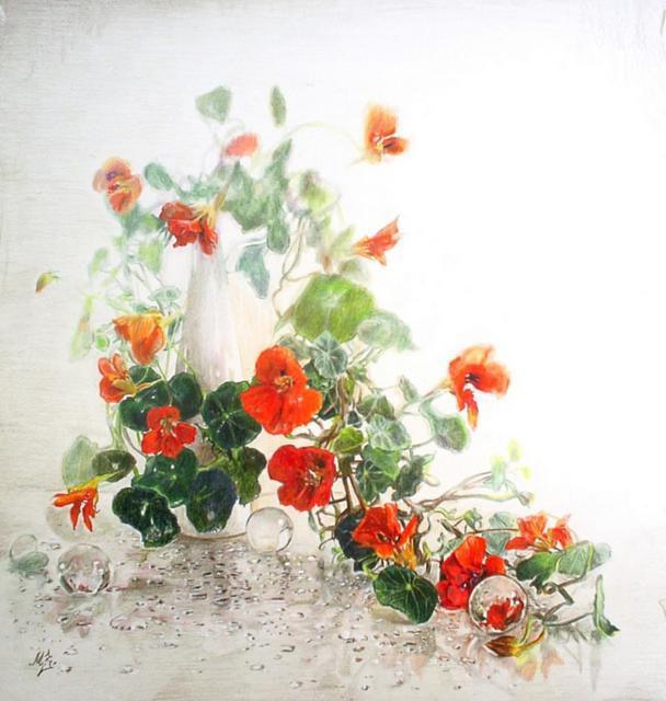 Цветущий вьюнок, цветы