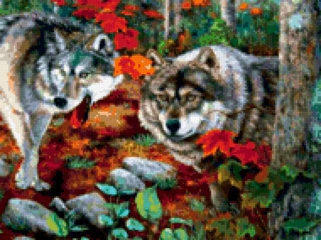 Волки в осеннем лесу,