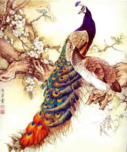 Райские птицы, птицы, восток,