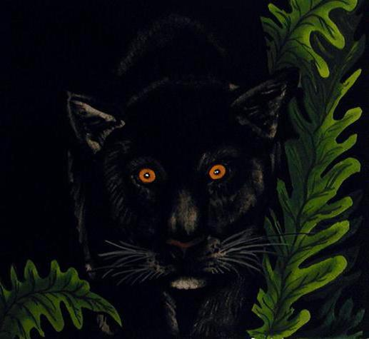 Black Panther, оригинал