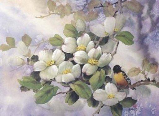 Яблоневый цвет, оригинал