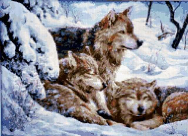 Волки, волки, волк, стая,