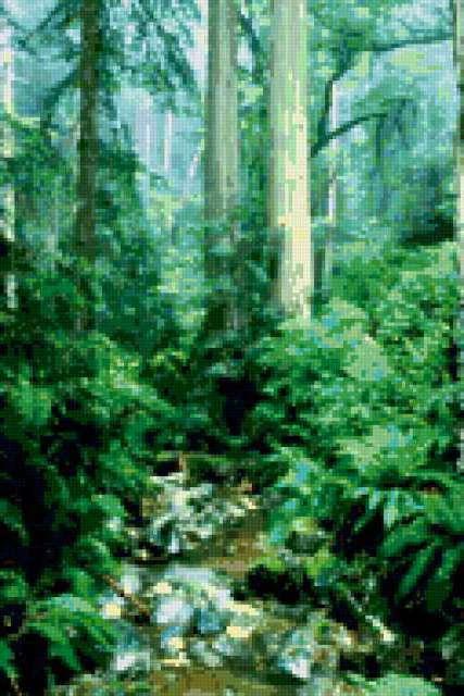 Лесной пейзаж, предпросмотр