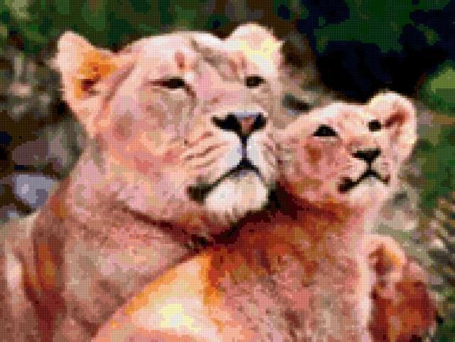 Львица со львенком