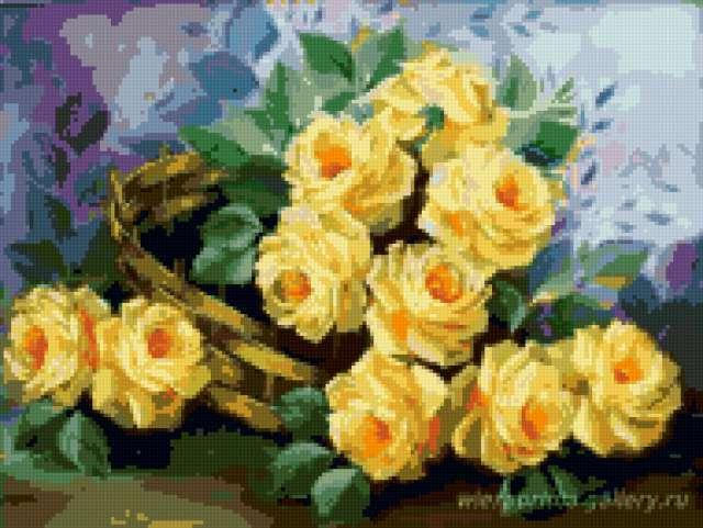 Желтые розы, цветы