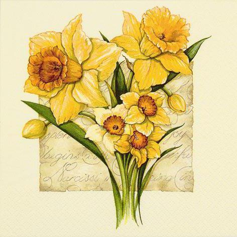 Букет нарциссов , букет, цветы