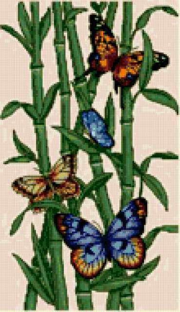 Бабочки и бамбук, предпросмотр
